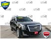 2017 Cadillac Escalade Luxury Other