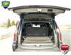 2017 Cadillac Escalade ESV Platinum (Stk: 171304) in Grimsby - Image 26 of 26