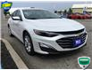 2019 Chevrolet Malibu LT (Stk: K408) in Grimsby - Image 4 of 15