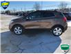 2016 Buick Encore Leather (Stk: 165256) in Grimsby - Image 6 of 15