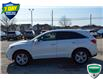 2014 Acura RDX Base (Stk: 142079) in Grimsby - Image 6 of 21