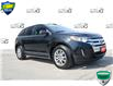 2014 Ford Edge SEL (Stk: 183176A) in Grimsby - Image 1 of 20