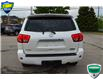 2010 Toyota Sequoia Platinum 5.7L V8 (Stk: 197687A) in Grimsby - Image 4 of 24