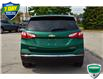 2018 Chevrolet Equinox Premier (Stk: M175AX) in Grimsby - Image 4 of 21