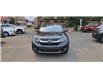2019 Honda CR-V EX-L (Stk: N3323) in Calgary - Image 10 of 14