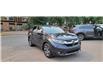 2019 Honda CR-V EX-L (Stk: N3323) in Calgary - Image 11 of 14