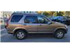 2004 Honda CR-V EX-L (Stk: NT3352) in Calgary - Image 6 of 13