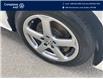 2015 Volkswagen Passat 1.8 TSI Trendline (Stk: N91109A) in Laval - Image 6 of 13
