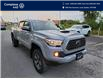 2018 Toyota Tacoma SR5 (Stk: E0637) in Laval - Image 7 of 19