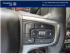 2019 Chevrolet Silverado 1500 LT Trail Boss (Stk: E0700) in Laval - Image 16 of 21