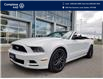 2014 Ford Mustang V6 Premium (Stk: E0717) in Laval - Image 1 of 19