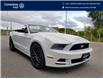 2014 Ford Mustang V6 Premium (Stk: E0717) in Laval - Image 7 of 19