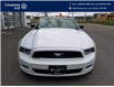 2014 Ford Mustang V6 Premium (Stk: E0717) in Laval - Image 8 of 19