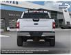 2019 Ford F-150 XLT (Stk: L1016) in Barrhaven - Image 6 of 25