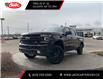 2021 Chevrolet Silverado 1500 LT Trail Boss (Stk: MZ437221) in Calgary - Image 1 of 28
