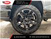 2021 Chevrolet Silverado 1500 LT Trail Boss (Stk: MZ437221) in Calgary - Image 9 of 28