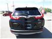 2019 Honda CR-V EX (Stk: 2191101) in Moose Jaw - Image 8 of 34