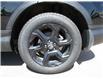 2019 Honda CR-V EX (Stk: 2191101) in Moose Jaw - Image 12 of 34