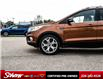 2017 Ford Escape Titanium (Stk: 700150A) in Kitchener - Image 2 of 22
