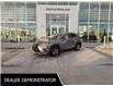 2021 Lexus NX 300 Base (Stk: L21134) in Calgary - Image 1 of 13
