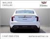 2021 Cadillac CT5 4dr Sdn Premium Luxury (Stk: 109056D) in Milton - Image 4 of 26