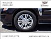 2016 Cadillac SRX AWD Luxury, REMOTE START, NAV, SUNROOF, POWER LIFT (Stk: 059646A) in Milton - Image 10 of 29
