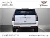 2019 Cadillac Escalade ESV 4WD 4dr Premium Luxury (Stk: PL5429) in Milton - Image 4 of 30