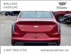 2021 Cadillac CT4 Sport DEMO NAV AND BOSE PKG (Stk: 114325D) in Milton - Image 6 of 22