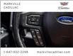 2017 Ford F-150 XLT (Stk: 255360A) in Markham - Image 15 of 27