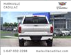 2019 Ford F-150 Limited (Stk: 291522A) in Markham - Image 4 of 30