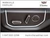 2019 Ford F-150 Limited (Stk: 291522A) in Markham - Image 11 of 30
