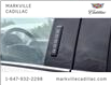 2019 Ford F-150 Limited (Stk: 291522A) in Markham - Image 14 of 30