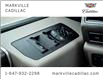 2019 Ford F-150 Limited (Stk: 291522A) in Markham - Image 22 of 30