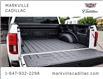2019 Ford F-150 Limited (Stk: 291522A) in Markham - Image 26 of 30