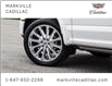 2019 Ford F-150 Limited (Stk: 291522A) in Markham - Image 28 of 30