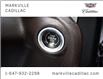 2019 Chevrolet Silverado 1500 LT Trail Boss (Stk: 357733A) in Markham - Image 11 of 27
