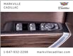 2019 Chevrolet Silverado 1500 LT Trail Boss (Stk: 357733A) in Markham - Image 20 of 27