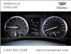 2019 Toyota Highlander Limited (Stk: P6517) in Markham - Image 20 of 30