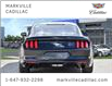 2015 Ford Mustang EcoBoost (Stk: P6518) in Markham - Image 3 of 25