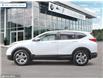 2019 Honda CR-V EX-L (Stk: U0268) in Sudbury - Image 3 of 27