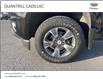 2018 Chevrolet Colorado Z71 (Stk: 102949) in Port Hope - Image 5 of 18
