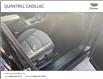 2019 Chevrolet Equinox LT (Stk: 155533) in Port Hope - Image 17 of 17