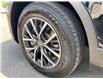 2019 Volkswagen Tiguan Comfortline (Stk: 9935) in Kingston - Image 24 of 24