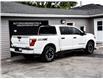 2018 Nissan Titan PRO-4X (Stk: 10010) in Kingston - Image 6 of 30