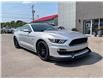 2015 Ford Mustang GT 50 Years Limited Edition (Stk: 15072) in Regina - Image 1 of 5