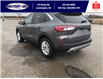 2021 Ford Escape SE (Stk: SEP6906) in Leamington - Image 9 of 24