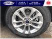 2021 Ford Escape SE (Stk: SEP6906) in Leamington - Image 24 of 24