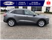 2021 Ford Escape SE (Stk: SEP6918) in Leamington - Image 5 of 24