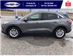 2021 Ford Escape SE (Stk: SEP6918) in Leamington - Image 10 of 24