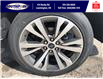 2021 Ford Expedition Max Platinum (Stk: SED6929) in Leamington - Image 25 of 26